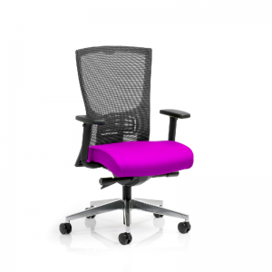 Domino Mesh Back Task Chair